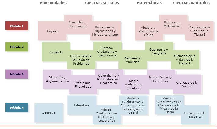 Mapa curricular Montini bachillerato