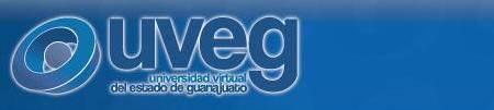 UNIVERSIDAD VIRTUAL DEL ESTADO DE GUANAJUATO