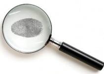 criminologia online