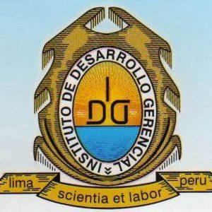 Diplomados a distancia en IDG